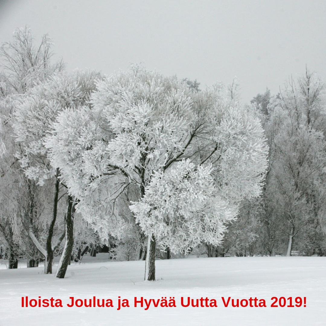 Hyvää Joulua jaMenestystä vuodelle 2019! (1).png